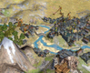 Sid Meier's Civilization IV: Warlords, chinese_city.jpg