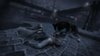 DEAD TO RIGHTS: Retribution, dead_to_rights_retribution_ps3screenshots24000dtrr_04.jpg
