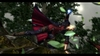 Devil May Cry 4, devil_may_cry_4_ps3__xbox_360___pcscreenshots8877capture0093_0776a.jpg