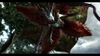Devil May Cry 4, devil_may_cry_4_ps3__xbox_360___pcscreenshots8879capture0093_1788b.jpg