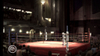 Fight Night Round 3, fitnt06x360scrnstpalace03.jpg