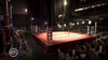 Fight Night Round 3, fitnt06x360scrnstpalace06.jpg