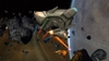Star Trek Online, sto_screen_ship_vigilant_120209_03.jpg