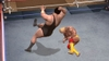 WWE Legends of WrestleMania, 070308x___06.jpg